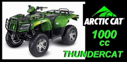 Thundercat Quad 110cc on Thundercat 1000cc