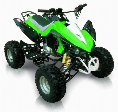 Thundercat Quad on Miniquad 125cc 4 Tempi Per Bambini   Automatico